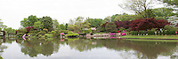 65021-03703 Japanese Garden in spring, Missouri Botanical Gardens, St Louis, MO