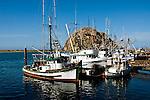 Morro Rock and Boats at Morro Bay, Central Coast, California