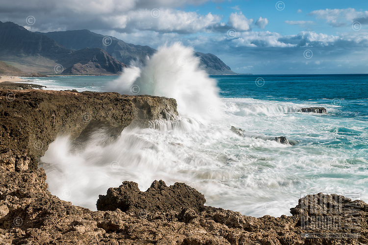 An explosion of white water as a large wave crashes into the rocky shore of Ka'ena Point State Park, O'ahu.