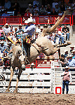 Saddle Bronc riding at Cheyenne Frontier Days Rodeo.