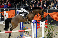 ZUIDBROEK - Paardensport, ICCH Zuidbroek, springen internationaal Grote Prijs , 05-01-2019, Eric ten Cate met Lacoste 145