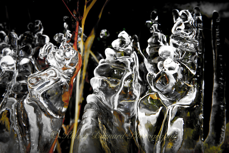 """ICE PUPPETS""<br />