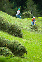 Tiroler Oberland, Tyrol, Austria, June 2009. Farmers collect the hay on the steep hills that are too steep for machinery. Traditional life still plays a big role in the village of Greit. The Region of the Tyrolian Highlands offer many different options for outdoor adventures, leisure and relaxing. Photo by Frits Meyst/Adventure4ever.com