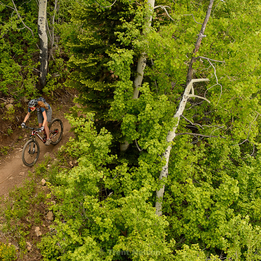Trent Nelson     The Salt Lake Tribune<br /> A mountain biker at the Park City Mountain Resort, Saturday June 6, 2015.