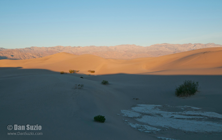 Mesquite Flat sand dunes at sunrise, Death Valley National Park, California