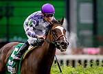 May 3, 2019 : Concrete Rose, #5, ridden by jockey Julien Leparoux, wins the Edgewood on Kentucky Oaks Day at Churchill Downs on May 3, 2019 in Louisville, Kentucky. Carolyn Simancik/Eclipse Sportswire/CSM
