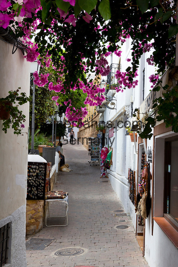 Spain, Andalusia, Province Almería, Costa de Almería, Mojácar: Street with Bougainvillea in white village | Spanien, Andalusien, Provinz Almería, Costa de Almería, Mojácar: enge Gasse im weissen Dorf mit Bougainvillea
