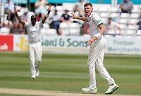 Henry Brookes of Warwickshire appeals for the wicket of Rishi Patel during Essex CCC vs Warwickshire CCC, Specsavers County Championship Division 1 Cricket at The Cloudfm County Ground on 15th July 2019