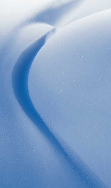 Drifting snow formed this shape on a very cold day (-35C) in Jasper National Park, Alberta, Canada.  Photo by Gus Curtis