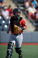 Batavia Muckdogs catcher Dustin Skelton (6) during a NY-Penn League game against the West Virginia Black Bears on August 29, 2019 at Monongalia County Ballpark in Morgantown, New York.  West Virginia defeated Batavia 5-4 in ten innings.  (Mike Janes/Four Seam Images)