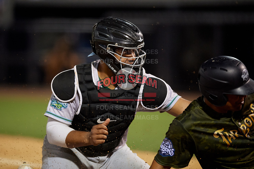 Daytona Tortugas catcher Hendrik Clementina (24) attempts to tag a runner out at home during a Florida State League game against the Tampa Tarpons on May 18, 2019 at George M. Steinbrenner Field in Tampa, Florida.  Daytona defeated Tampa 7-6.  (Mike Janes/Four Seam Images)