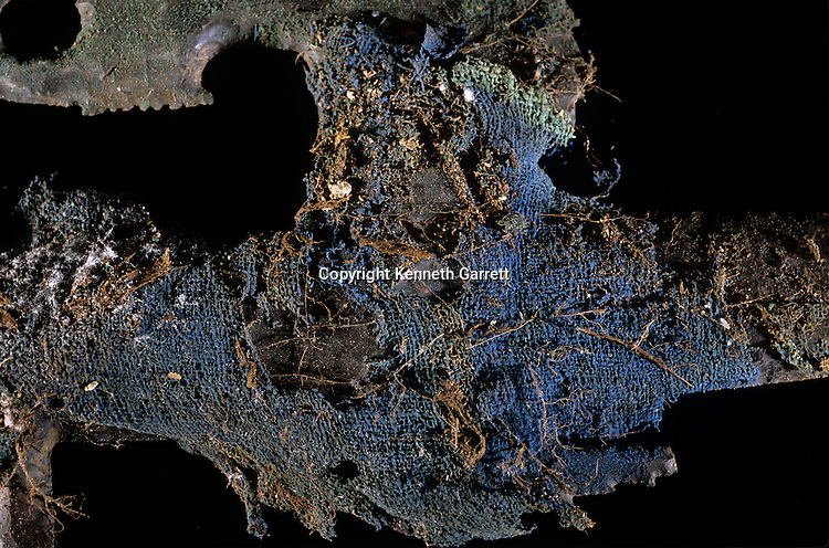 Copan; Honduras; Maya; Ricardo Agurcia, Rosalilla Temple, Eccentric Flint, offering, Temple dedication, detail
