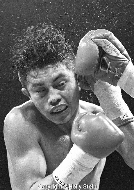 Mark Johnson v. Enrique Orozco. Johnson W TKO12.  WBB Flyweight title.