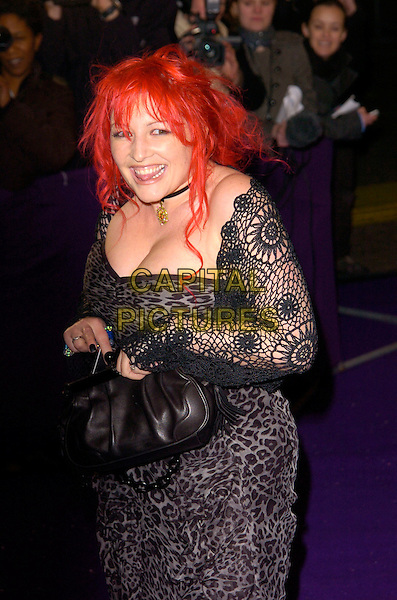 CHRISTOPHER BIGGINS & JANE GOLDMAN.British Comedy Awards 2007, London Studios, South Bank, London, England. .December 5th 2007.half length black crochet grey gray leopard print dress red hair wrap windy messy hair bag purse cleavage.CAP/CAN.©Can Nguyen/Capital Pictures