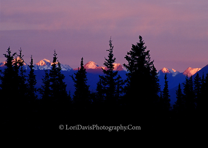 #L20  Purple Sunset, Denali Range
