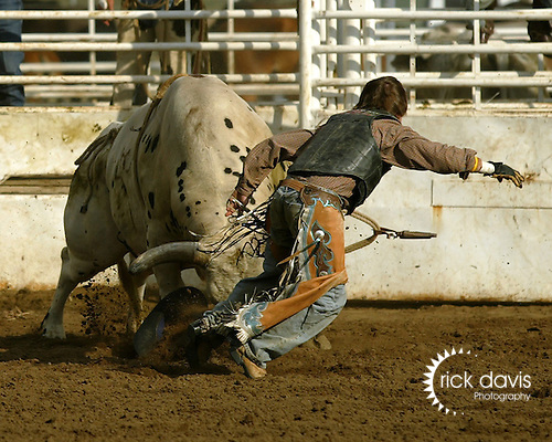 Riding a bull for eight seconds is only the first step. Escaping the arean unharmed requires quick action and fast feet.