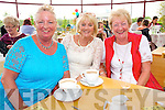 Mary Jennings, Marie Morrison and Helena Leahy enjoying the Ballyseedy Garden Centre Family fun Day in aid of the Home to Rome Cycle on Sunday