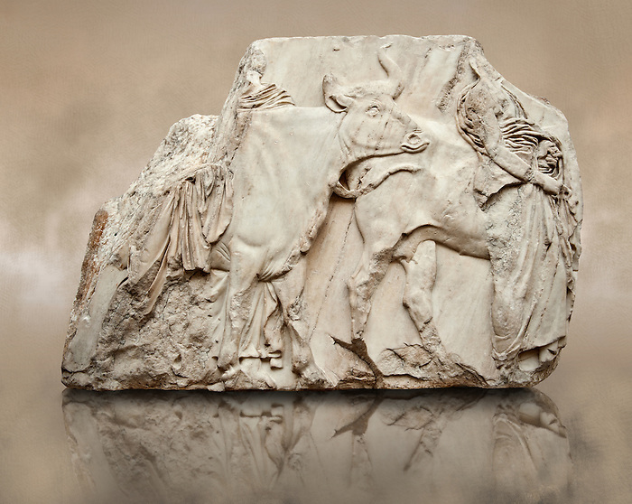 Marble Releif Sculptures from the south  frieze around the Parthenon Block XLVI 142-144. From the Parthenon of the Acropolis Athens. A British Museum Exhibit known as The Elgin Marbles