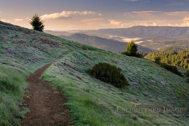 Trail along hillside in Castle Rock State Park, Santa Cruz Mountains, Santa Cruz County, California