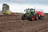 Harvesting beans and baling bean straw <br /> ©Tim Scrivener Photographer 07850 303986<br />      ....Covering Agriculture In The UK....