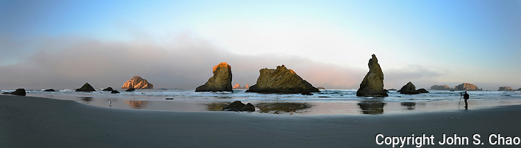 Panorama of Bandon, Oregon beach sea stacks at sunrise with Face Rock, photographer and seagull as bookends, gray marine fog and centered white cloud in backdrop.