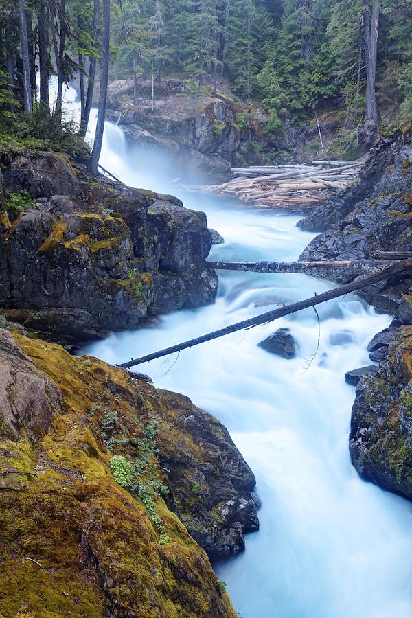 The Ohanapecosh River falls over Silver Falls, Mount Rainier National Park, Washington, USA