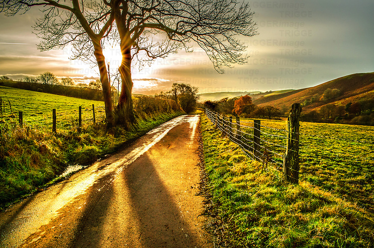 rural scene with single track road leading towards sunset over rolling English countryside