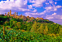 Vineyards surrounding San Gimignano, Tuscany, Italy