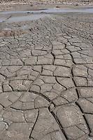Vulcanelli di Macalubbe, Vulcanelli di Macalube, Vulkanelli, Vulcanello, Macalube di Aragona, Minivulkane aus Schlamm, Schlamm wird in die Höhe gedrückt und bildet kleine Berge und Krater, Schlamm fließt zunächst, trocknet dann aus und bildet Trockenrisse, Naturreservat auf Sizilien, Italien