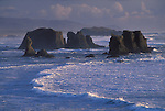 Sea stacks at Bandon Beach .view from Face Rock State Wayside; .Bandon, Oregon coast.  .#2305-4117
