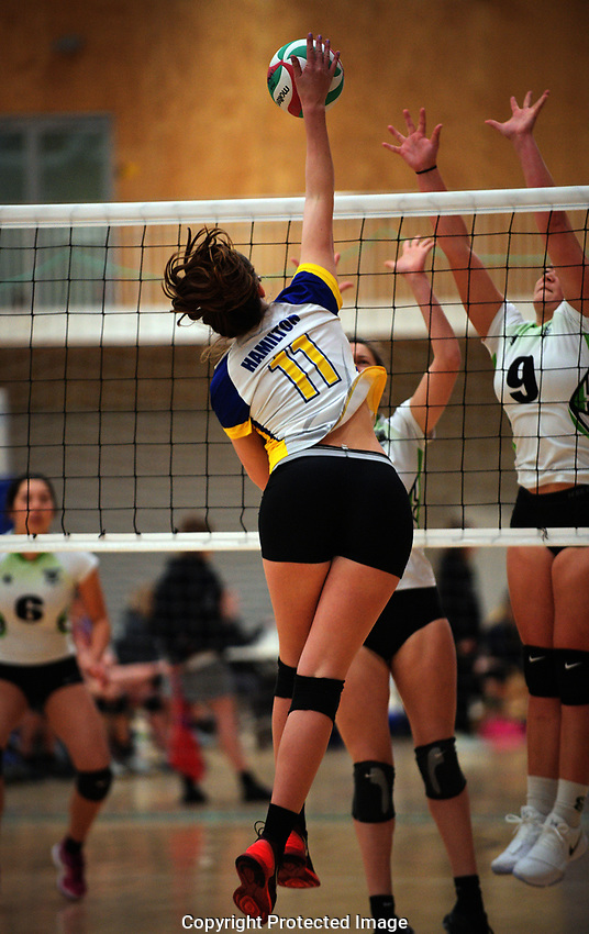 Action from the Volleyball NZ 50th National Club Championship women's division one match between East Coast Thunder and Hamilton at ASB Sports Centre in Wellington, New Zealand on Saturday, 12 October 2017. Photo: Dave Lintott / lintottphoto.co.nz