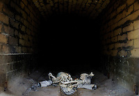 The skeletal remains of an unidentified body presumed to be of a migrant cool in a cremation oven at Adair Funeral Home in Tucson, Arizona, Thursday, August 11, 2009. Bodies are released from the Pima County Medical Examiners Office for burial after it has been concluded that an identification cannot be made. In late 2004, Pima County ruled that bodies found in the desert can be cremated rather than buried to accommodate for the lack of plot space in the cemetery...PHOTOS/ MATT NAGER