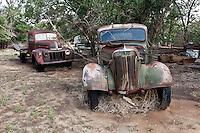 Old Abandoned Pick-Up Trucks in Nara Visa, NM