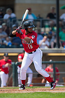 Hendrik Clementina (56) of the Billings Mustangs at bat against the Missoula Osprey at Dehler Park on August 20, 2017 in Billings, Montana.  The Osprey defeated the Mustangs 6-4.  (Brian Westerholt/Four Seam Images)