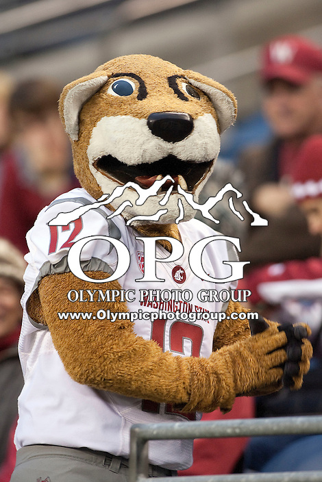 Nov  26, 2011:  Washington State Mascot Butch watches from the stands during the game against Washington .  Washington defeated Washington State 38-21at Century Link Stadium in Seattle, Washington...