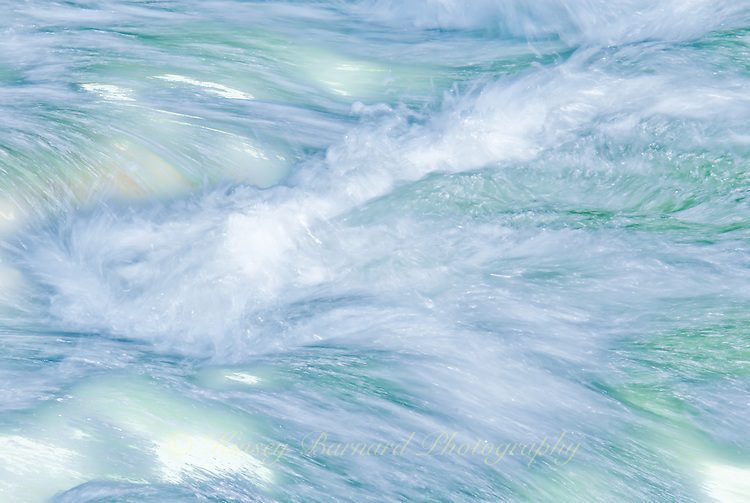 """FLATHEAD FLYING""<br />