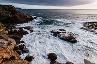 United States, California, Point Lobos State Natural Reserve. Rocky coast.