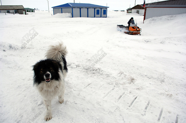 A man drove through the settlement of Uelkal on the eastern coast of Chukotka. Uelkal, Chukotka Autonomous Okrug, Russia, April 3, 2007.
