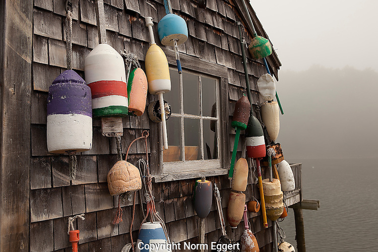 Fishing Shack with Lobster Buoys Hanging on the Building at Harbor in York, Maine