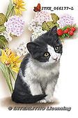 Isabella, REALISTIC ANIMALS, REALISTISCHE TIERE, ANIMALES REALISTICOS, paintings+++++,ITKE066177-L,#a#, EVERYDAY ,cats ,collage