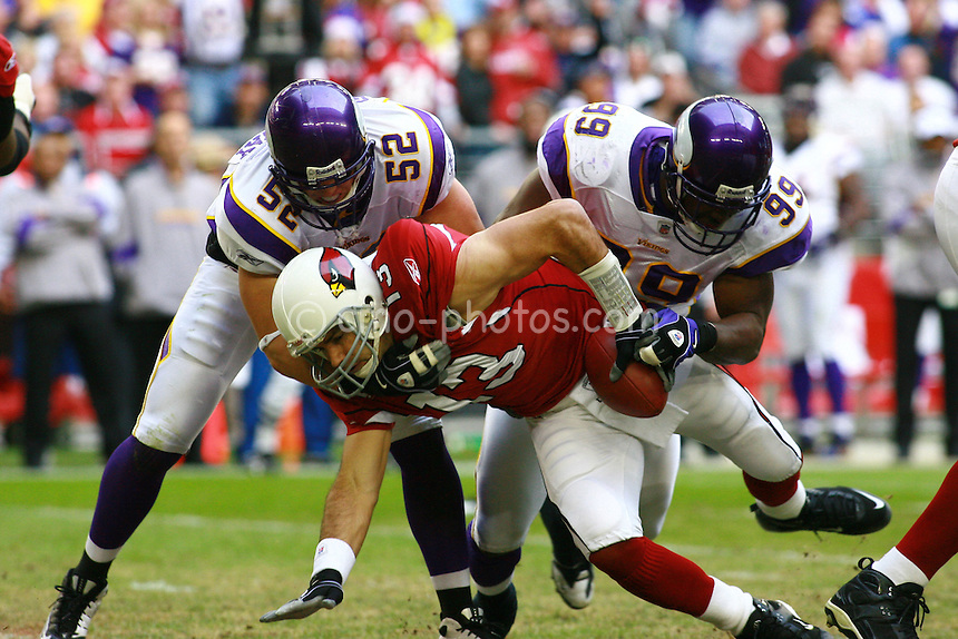 Dec 07, 2008; Glendale, AZ, USA; Arizona Cardinals quarterback Kurt Warner (13) is sacked by Minnesota Vikings linebacker Chad Greenway (52) and linebacker Napoleon Harris (99) in the first quarter of a game at University of Phoenix Stadium.