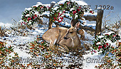 Dona Gelsinger, CHRISTMAS ANIMALS, WEIHNACHTEN TIERE, NAVIDAD ANIMALES, paintings+++++,USGE1302A,#xa# ,deer,deers,
