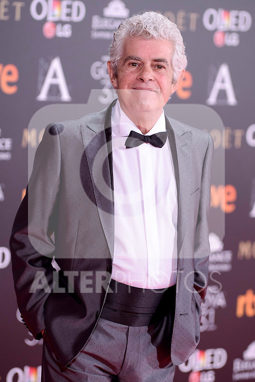 Guillermo Montesinos attends to the Red Carpet of the Goya Awards 2017 at Madrid Marriott Auditorium Hotel in Madrid, Spain. February 04, 2017. (ALTERPHOTOS/BorjaB.Hojas)