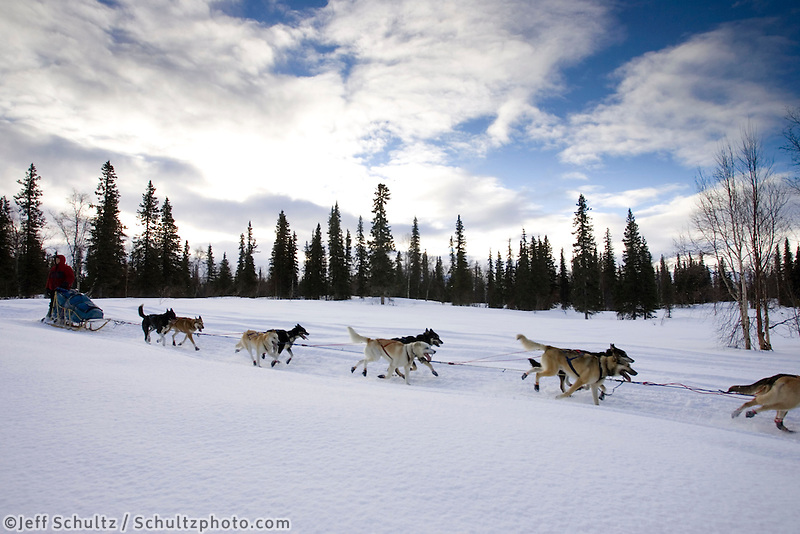Ramey Smyth near Finger Lake Chkpt 2005 Iditarod AK Winter