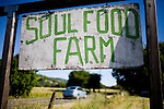 Signs at Soul Food Farm in Vacaville, CA May 7, 2010.