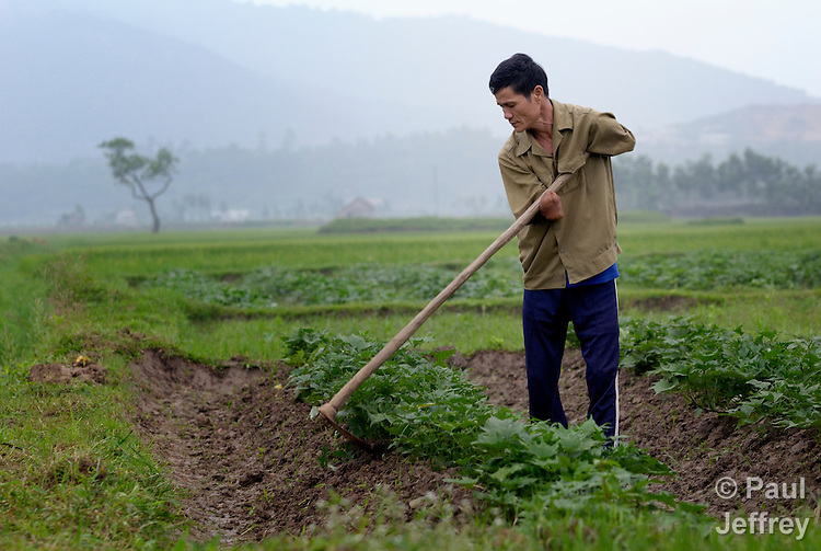Nguyen Xuan Cuong, who lost his arms to a landmine during the U.S. war against Vietnam, works in his agricultural field in Ha Trach, Vietnam.