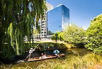 Punting on Avon River in Christchurch, Canterbury, South Island, New Zealand