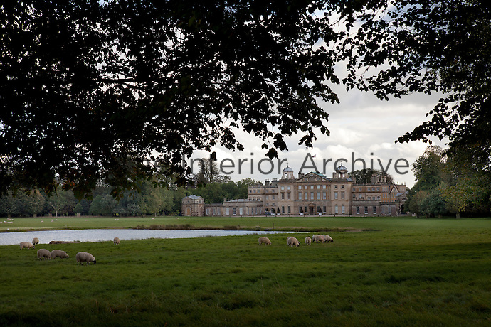 Sheep grazing in the stately grounds of Badminton House