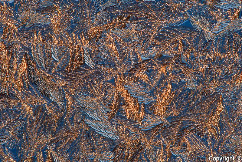 Ice patterns on window at sunrise<br />Winnipeg<br />Manitoba<br />Canada