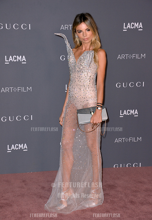Erica Pelosini at the 2017 LACMA Art+Film Gala at the Los Angeles County Museum of Art, Los Angeles, USA 04 Nov. 2017<br /> Picture: Paul Smith/Featureflash/SilverHub 0208 004 5359 sales@silverhubmedia.com